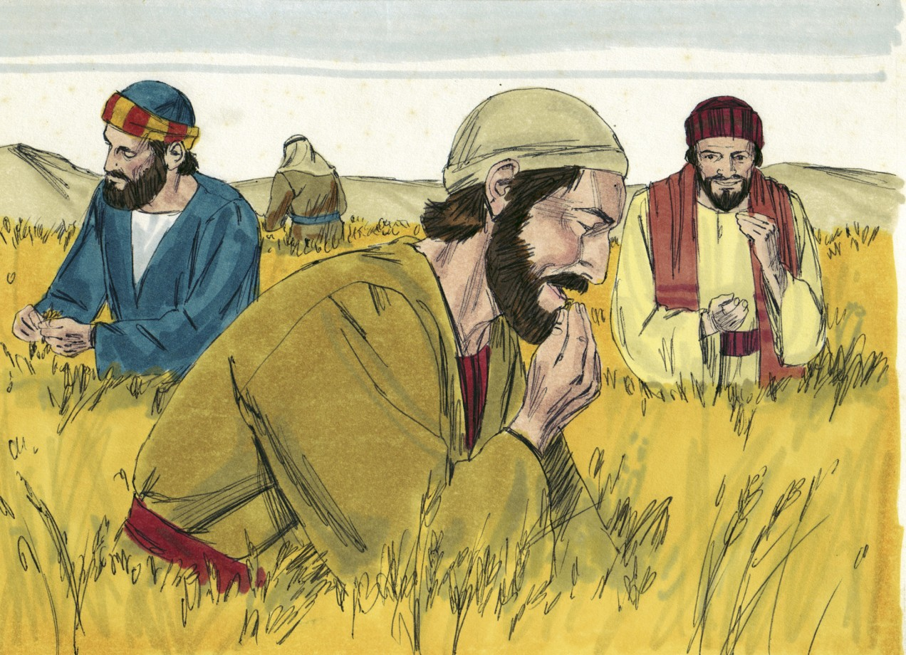 Matthew 12:1 - Apostles on the Sabbath